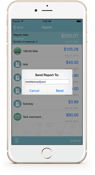 submit your expense report on the go